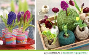 Ёмкости для цветов