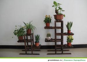 уровни домашнего сада