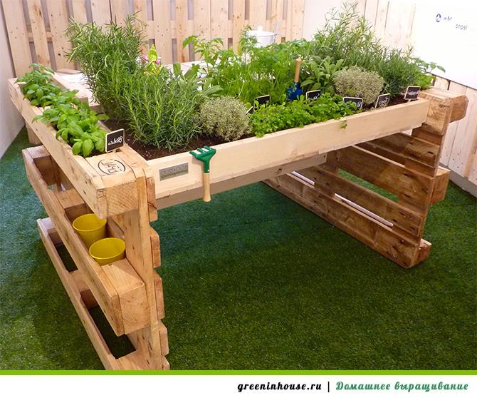 Идеи домашнего огорода