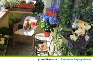 Место для зимнего сада