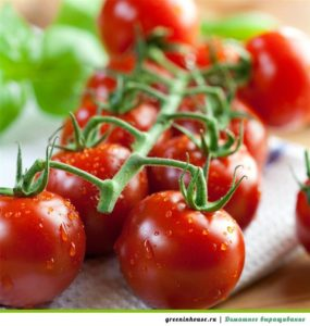 tomaty-cherri