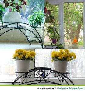 konstrukcii-dlya-cvetov