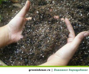 grunt-dlya-zeleni